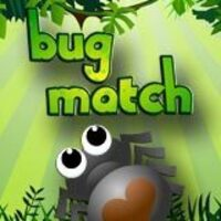 Image for Bug Match game