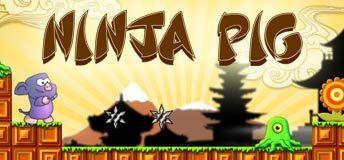 Image for Ninja Pig game