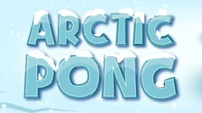 Image for Arctic Pong game
