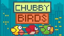 Image for Chubby Birds game