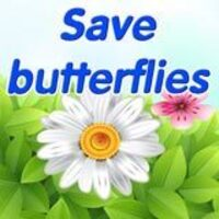 Image for Save Butterflies game
