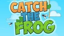 Image for Catch The Frog game