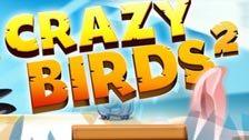 Image for Crazy Birds 2 game