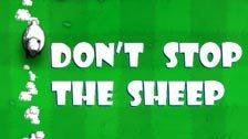 Image for Don't Stop the Sheep game