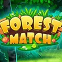 Image for Forest Match game