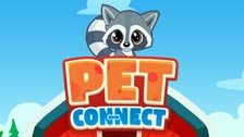 Image for Pet Connect game