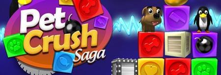 Image of Pet Crush Saga game